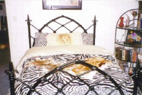 amber's gothic bed
